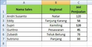 Tabel Penjualan Januari