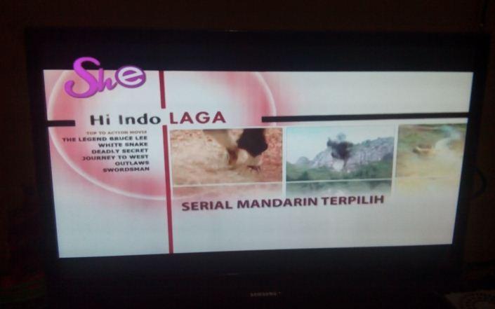 channel baru satelit palapa d she tv